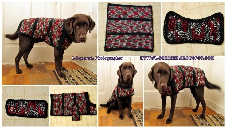 22 Diy Ideas To Create Dog Sweater World Inside Pictures