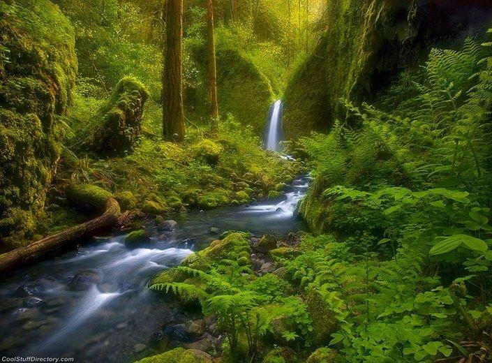Magical Nature Landscapes (22)