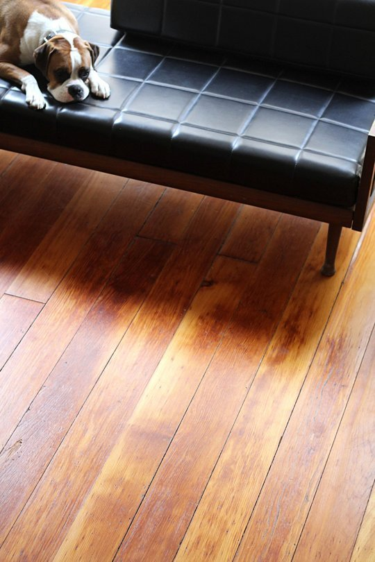 14 Best Tips And Methods To Have Cleanest Floors Ever