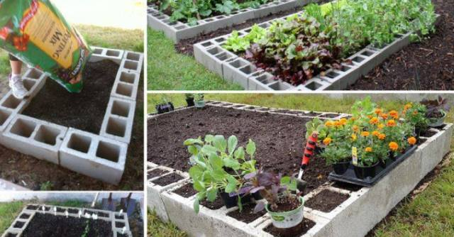 Fantastic Way To Beautify Your Garden – Make a Raised Bed Garden Out Of Cinder Blocks