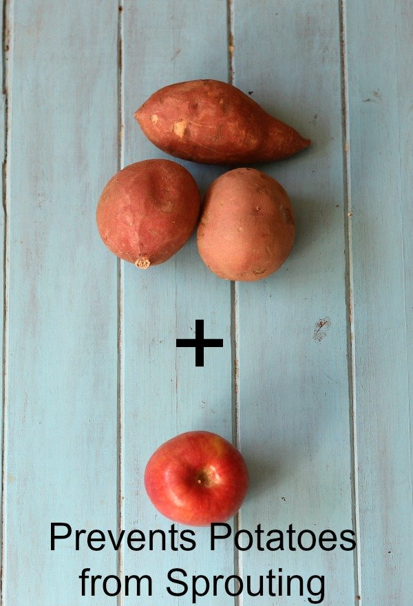 Prevent-Potatoes-from-Sprouting