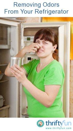 stinky_refrigerator_fancy4