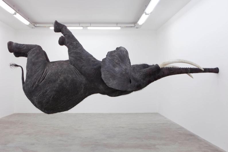 hanging-elephant