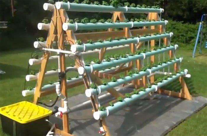 hydroponic-system