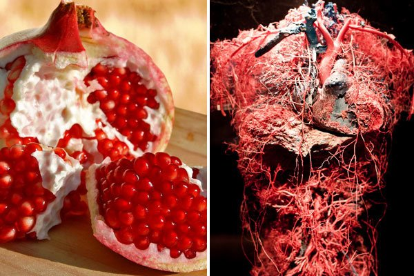 pictures of food that look like body parts