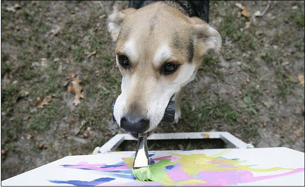 animals that make art