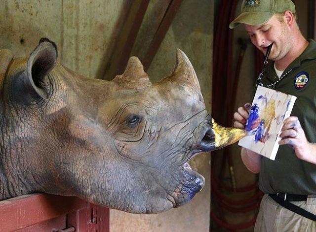 animals painting art