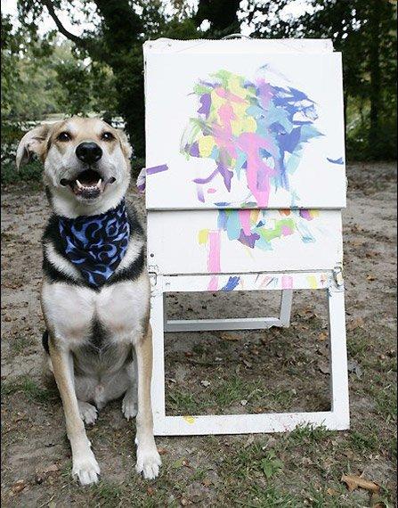 painter dog