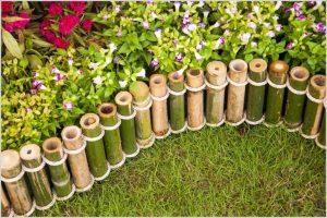bamboo landscape design