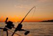 Perfect Fishing Trip