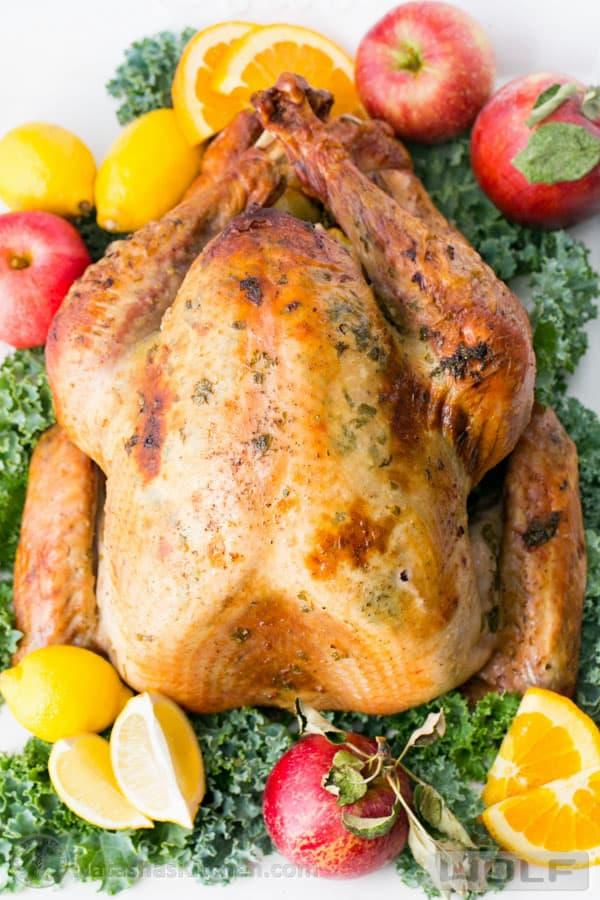 delicious turkey recipes