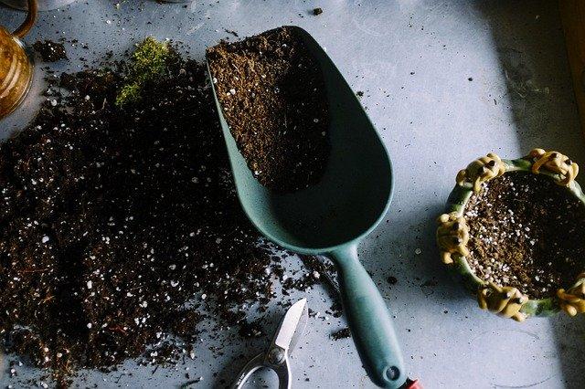garden remodeling ideas