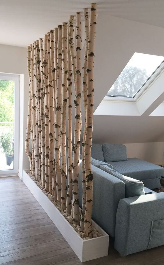 birch tree room divider