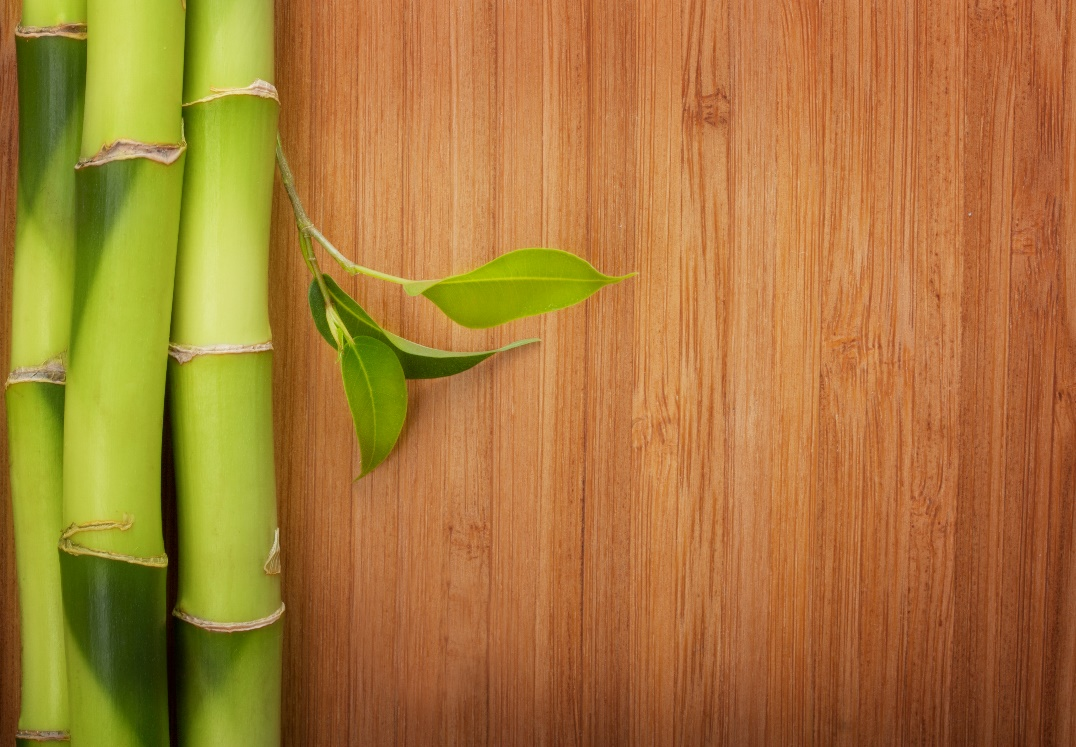 A picture containing green, wooden, wood, vegetable Description automatically generated