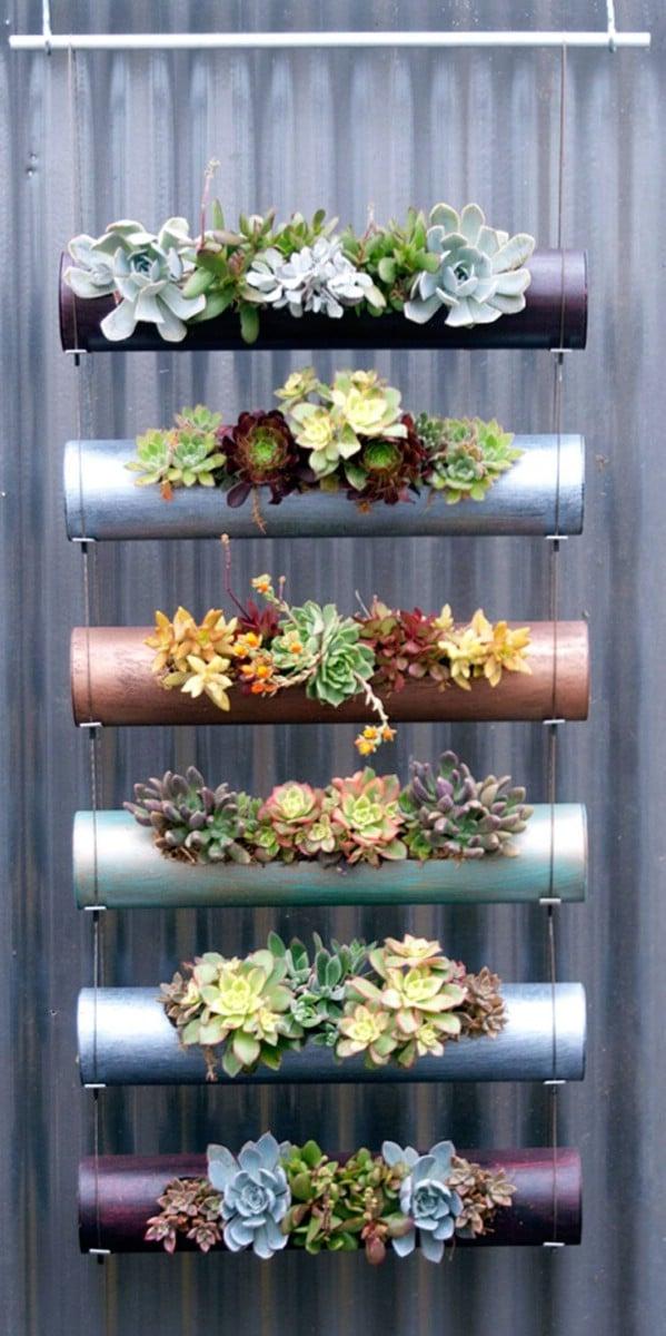 succulent gardens ideas